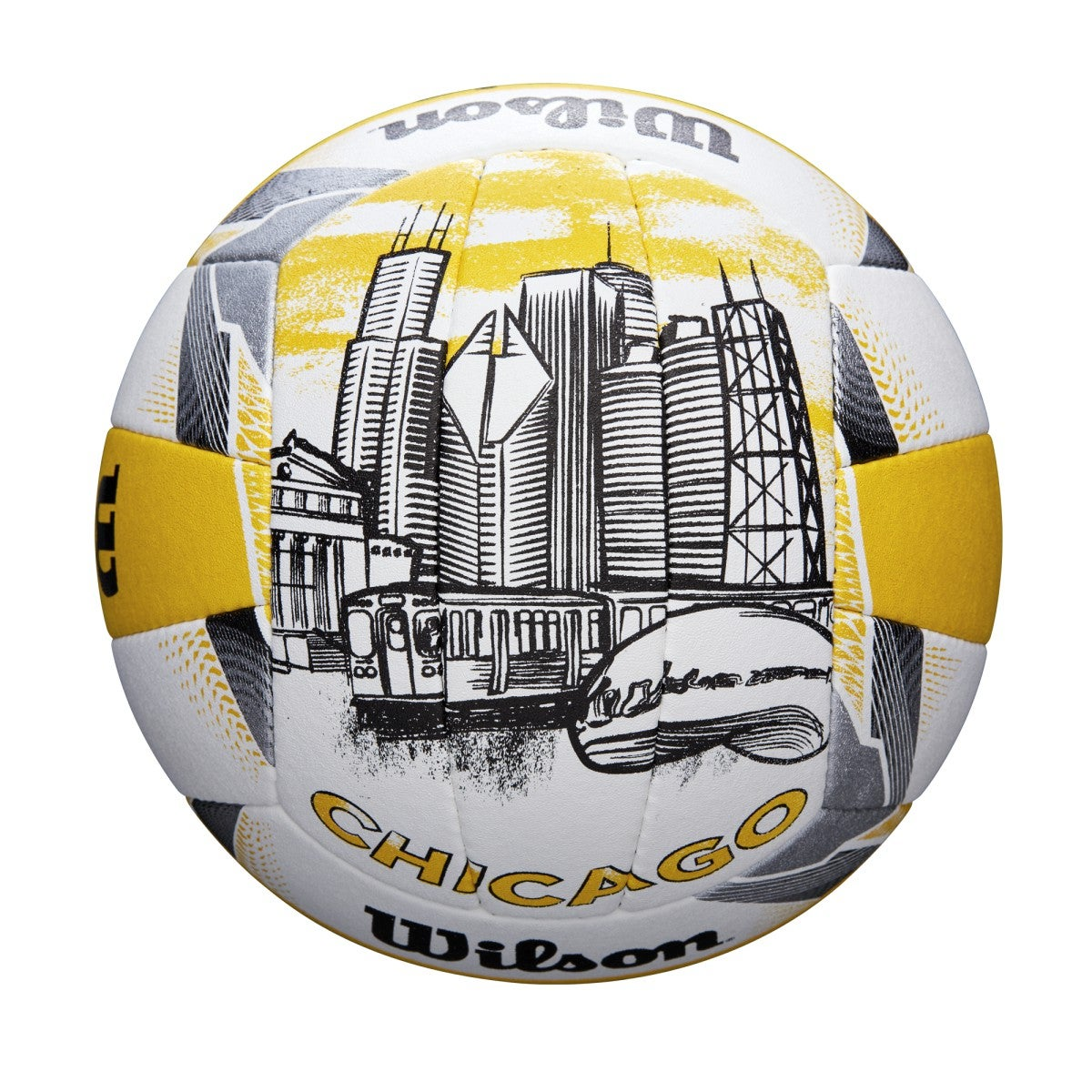 Chicago AVP Official Game Ball