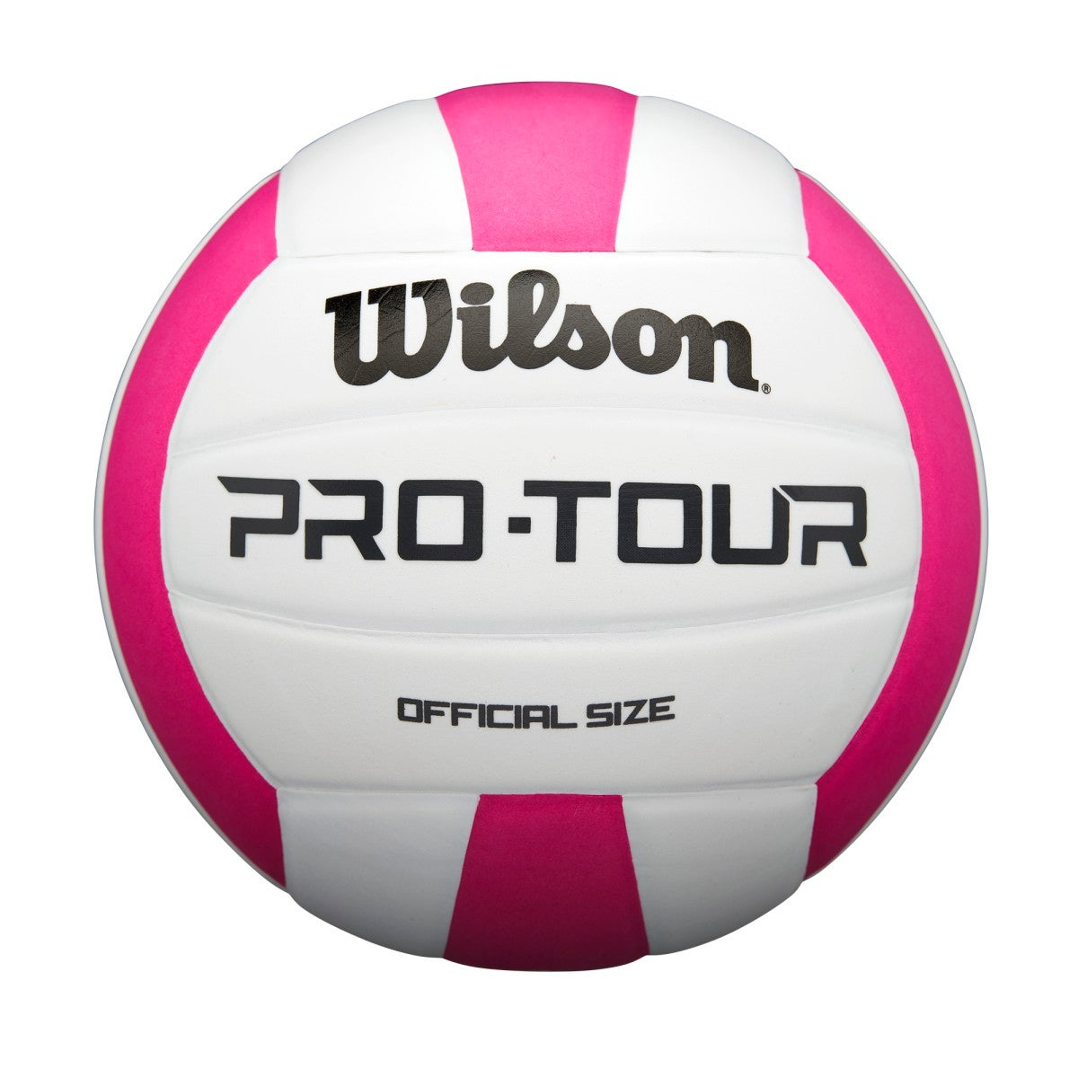 Pro Tour Volleyball